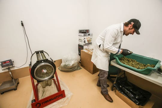Simon Watson the director of operations at VetsLeaf works next to the Triminator that the company uses to trim small low-grade cannabis buds on Friday, January 4, 2019 in Desert Hot Springs. Watson says the Triminator can trim  what a human will takes an 8 hour shift to do in 15 minutes.