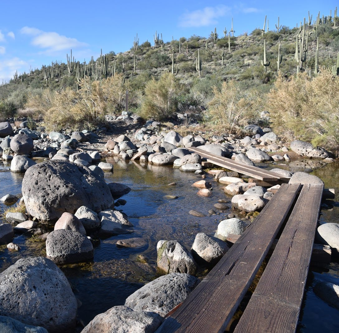 Go take a hike: Wet fall and winter have made the desert pop at Spur Cross Ranch
