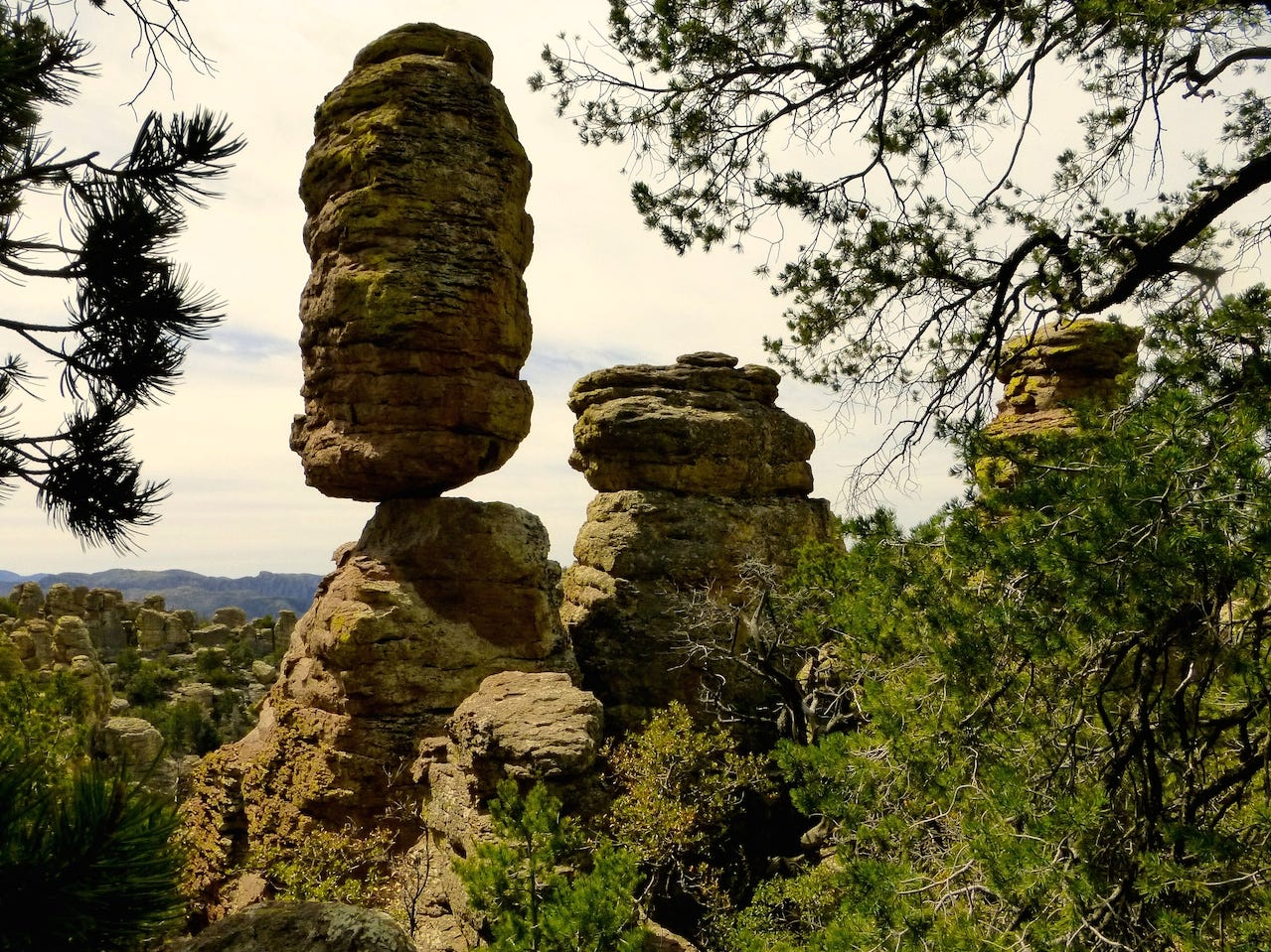 Chiricahua National Monument, southeast of Willcox, features a campground, a scenic drive, a historic district and hiking trails past distinctive rock pinnacles, spires and hoodoos.