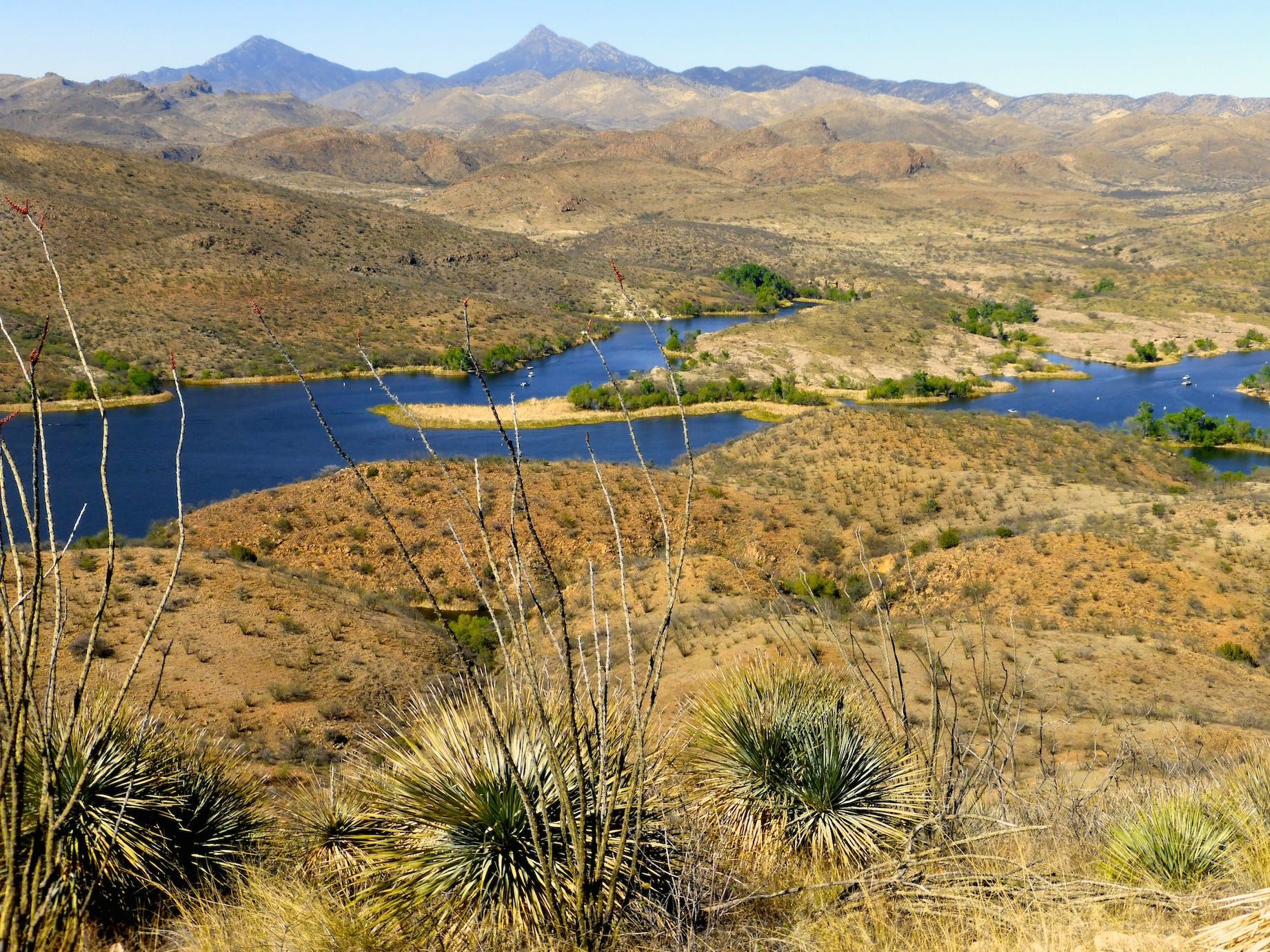 Patagonia Lake State Park can be found hidden among the rolling hills south of the town of Patagonia.