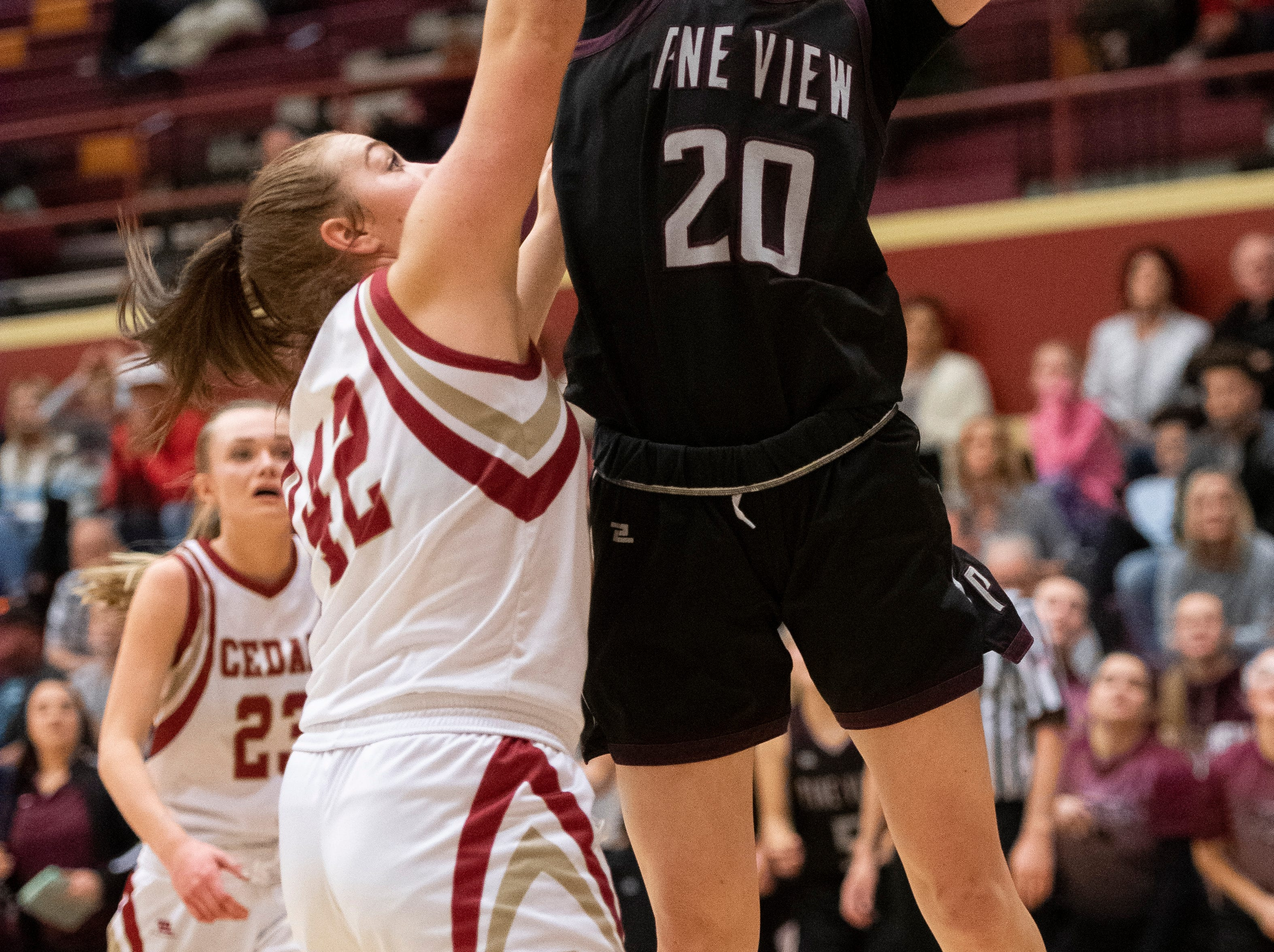 Pine View High School sophomore Averi Papa (20) shoots a basket and one against Cedar High School at CHS Tuesday, January 8, 2019. Cedar remains undefeated with a 63-40 win over the Panthers.