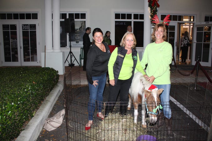 Beth Pennebaker, left, Bobbi Martin and Michele Gojhovich with Harry, a mini-horse, attended the Provident Jewelry party for the Equine Rescue and Adoption Foundation.