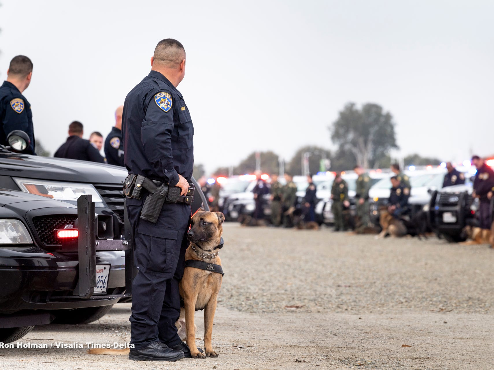 """CHP officer Code Chavez, left, and his partner Boj join other K-9 units from the Central Valley to show respect for Tulare Police K-9 """"Bane"""" during a memorial service for the dog on Wednesday, January 9, 2019. Bane was killed during an officer-involved shooting on December 9 of last year."""