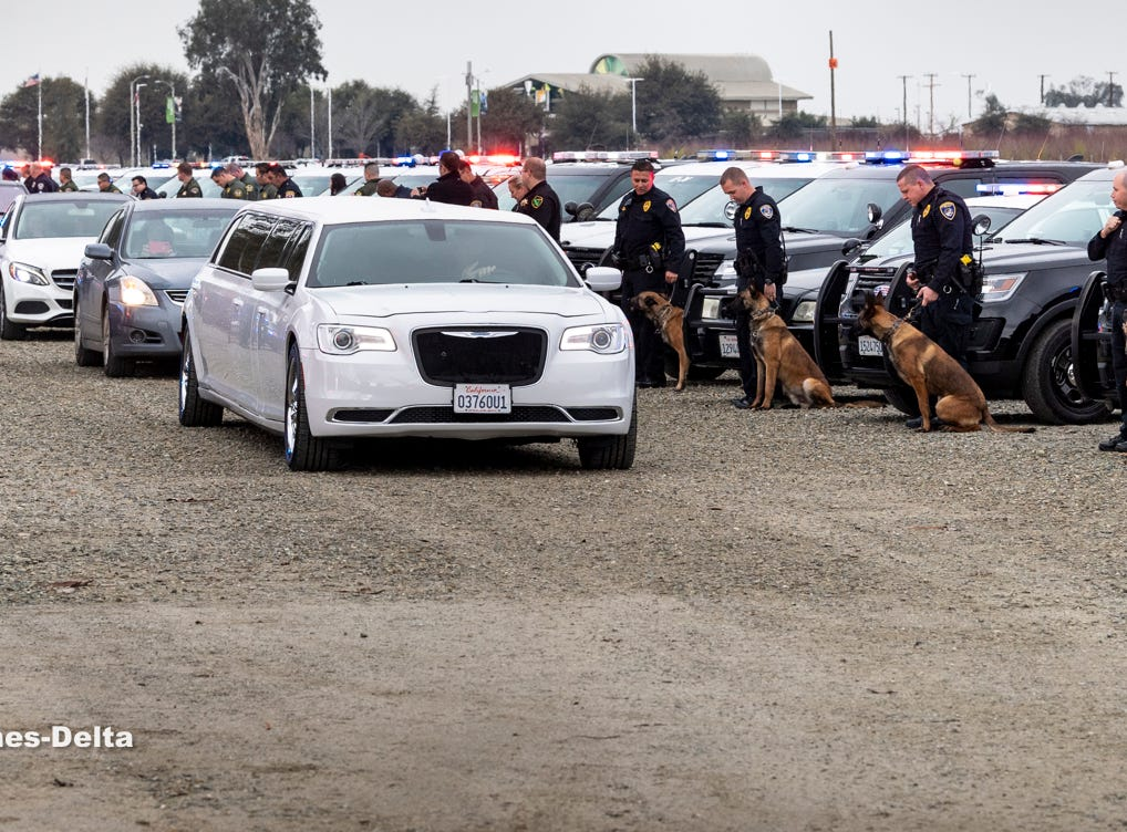 """K-9 units from around the Central Valley line up to show support for Tulare Police K-9 """"Bane"""" during a memorial for the dog on Wednesday, January 9, 2019. Bane was killed during an officer-involved shooting on December 9 of last year."""