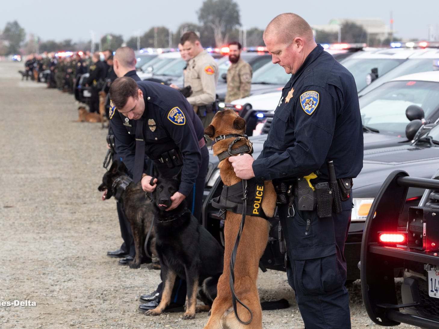 """CHP officer Matt Ashe, right, and his partner Diesel join other K-9 units from the Central Valley to show respect for Tulare Police K-9 """"Bane"""" during a memorial service for the dog on Wednesday, January 9, 2019. Bane was killed during an officer-involved shooting on December 9 of last year."""