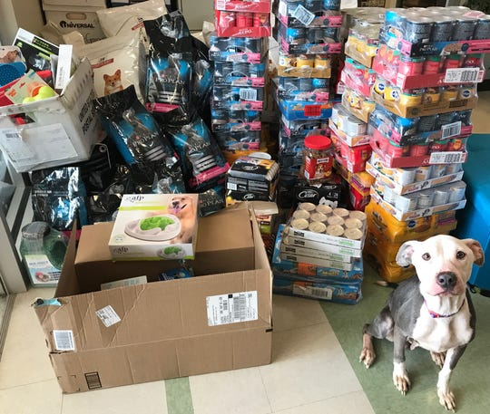 More than $4,000, plus food and other supplies, has been donated to the Delaware Humane Association for Sky, an underweight female terrier mix.
