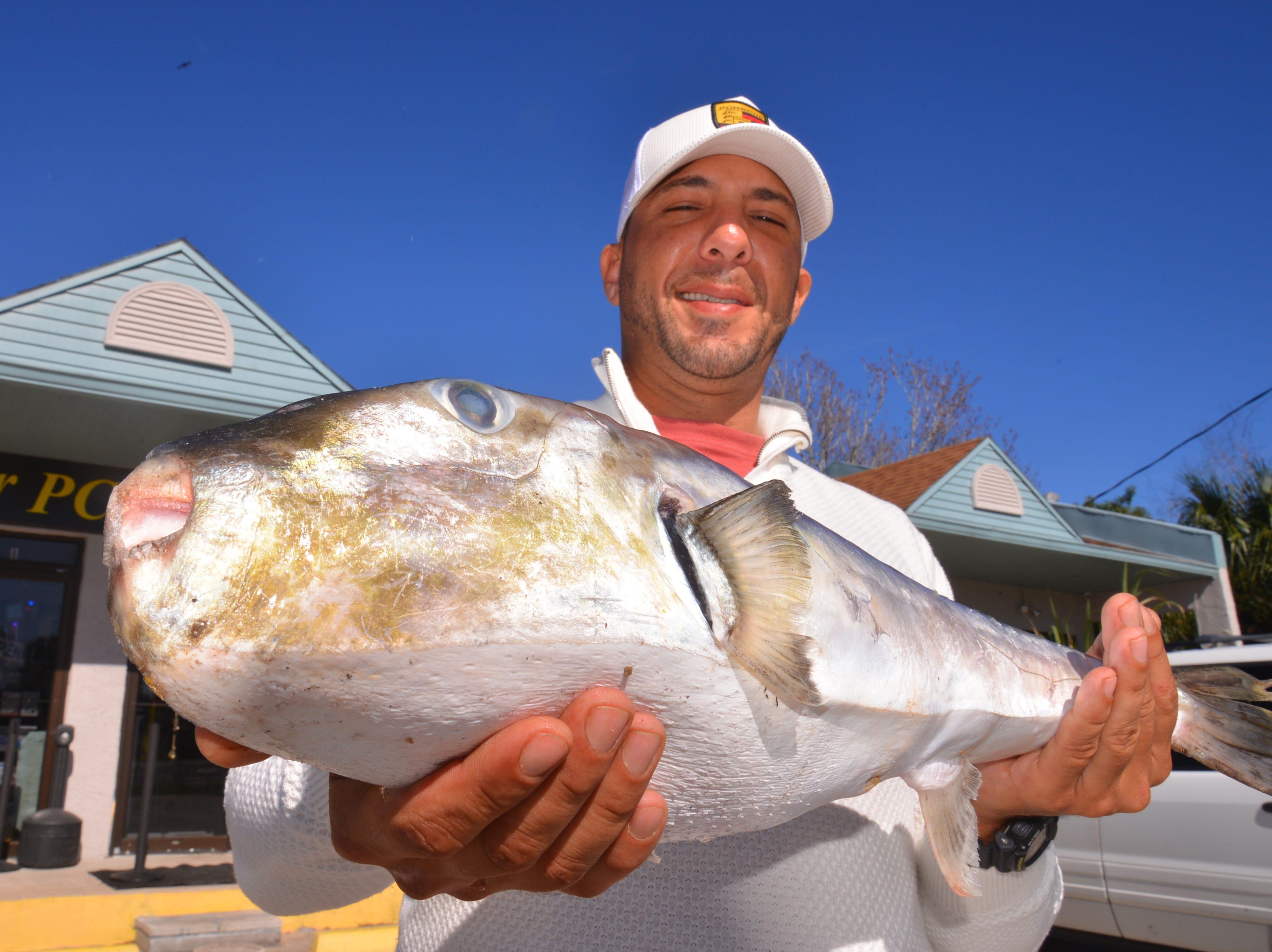Monster puffer fish! Angler hooks potential world record-breaker off Port Canaveral