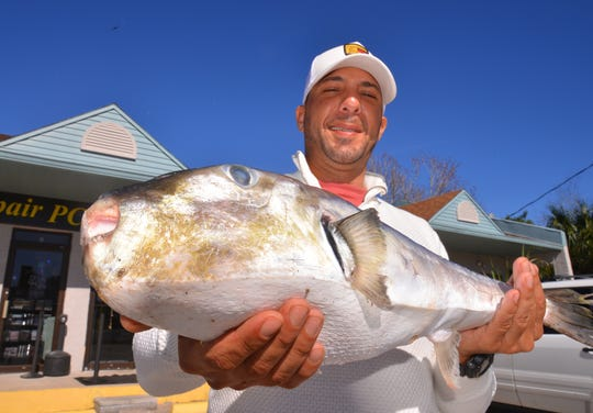 Cocoa angler Adhem Saleh was fishing offshore from Port Canaveral Monday when he caught this whopping oceanic puffer fish.