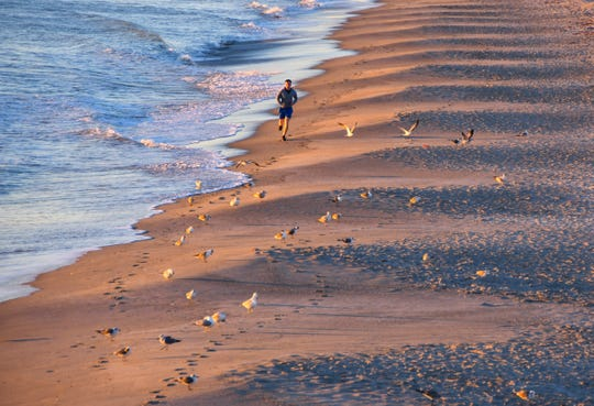 A lone runner makes his way down the beach at sunrise, dodging the incoming tide at the waterline. The temperature was 48 degrees at sunrise beachside Thursday morning in Brevard County with winds making it feel even colder.