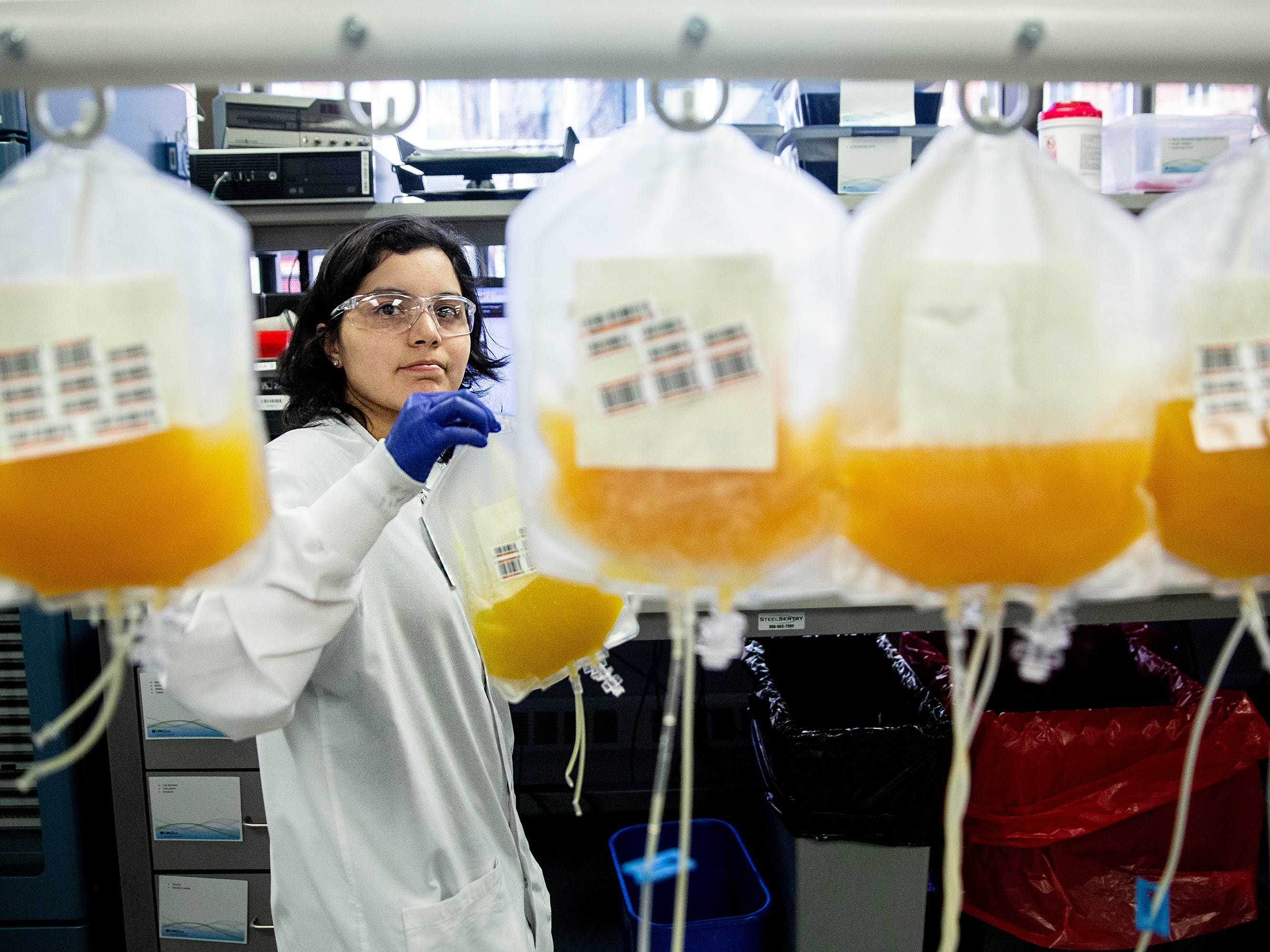 Reggeany Friesen, a component technician II at LifeServe Blood Center, labels materials while working in the blood center's lab on Thursday, Jan. 10, 2019, in Des Moines. Under Iowa's new tax law many of the supplies LifeServe uses are now taxed causing them to pay more than a million dollars in taxes annually.