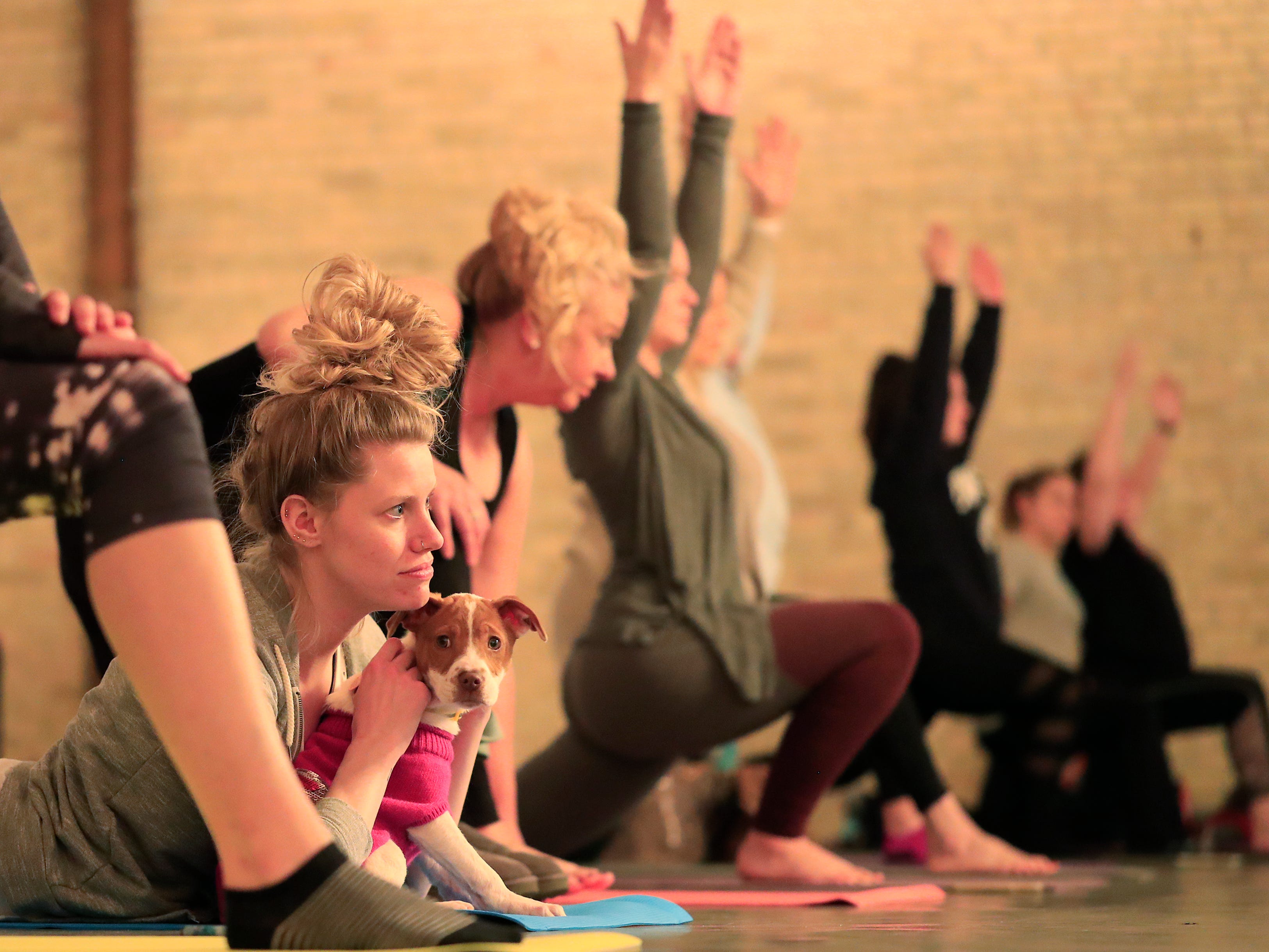 Kaitlin Lotto of Greenville participates in a Yoga With Puppies class at Gather on Broadway on Wednesday, January 9, 2019 in Green Bay, Wis.