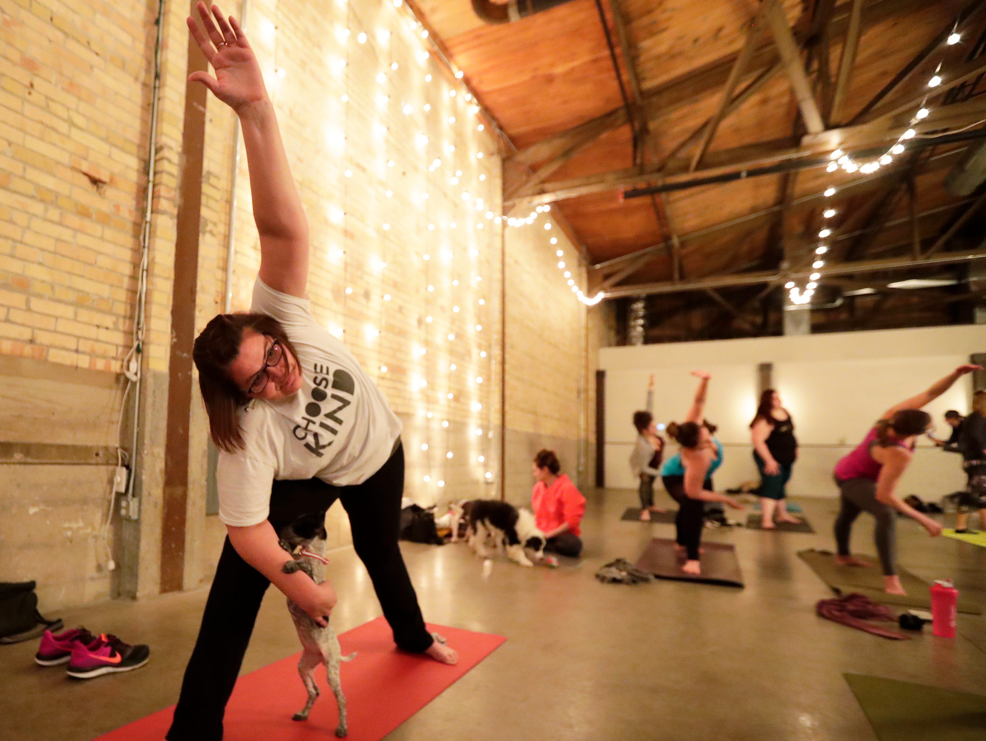 Puppies from Lucky 7 Dog Rescue interact with people during a Yoga With Puppies class at Gather on Broadway on Wednesday, January 9, 2019 in Green Bay, Wis.
