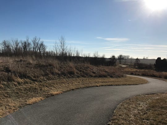 The winter sun-drenched South Sycamore Bottoms Marsh trail in Iowa City is shown on Jan. 10, 2019.