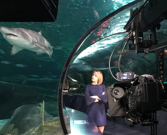 "NBC News meteorologist Dylan Dreyer hosts ""Earth Odyssey with Dylan Dreyer"" at Ripley's Aquarium locations in Gatlinburg, Myrtle Beach and Toronto."