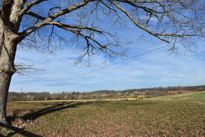 This view of 111 acres could change drastically as the city commission will review a rezoning request on the property to allow for 141-lot subdivision on Feb. 7.