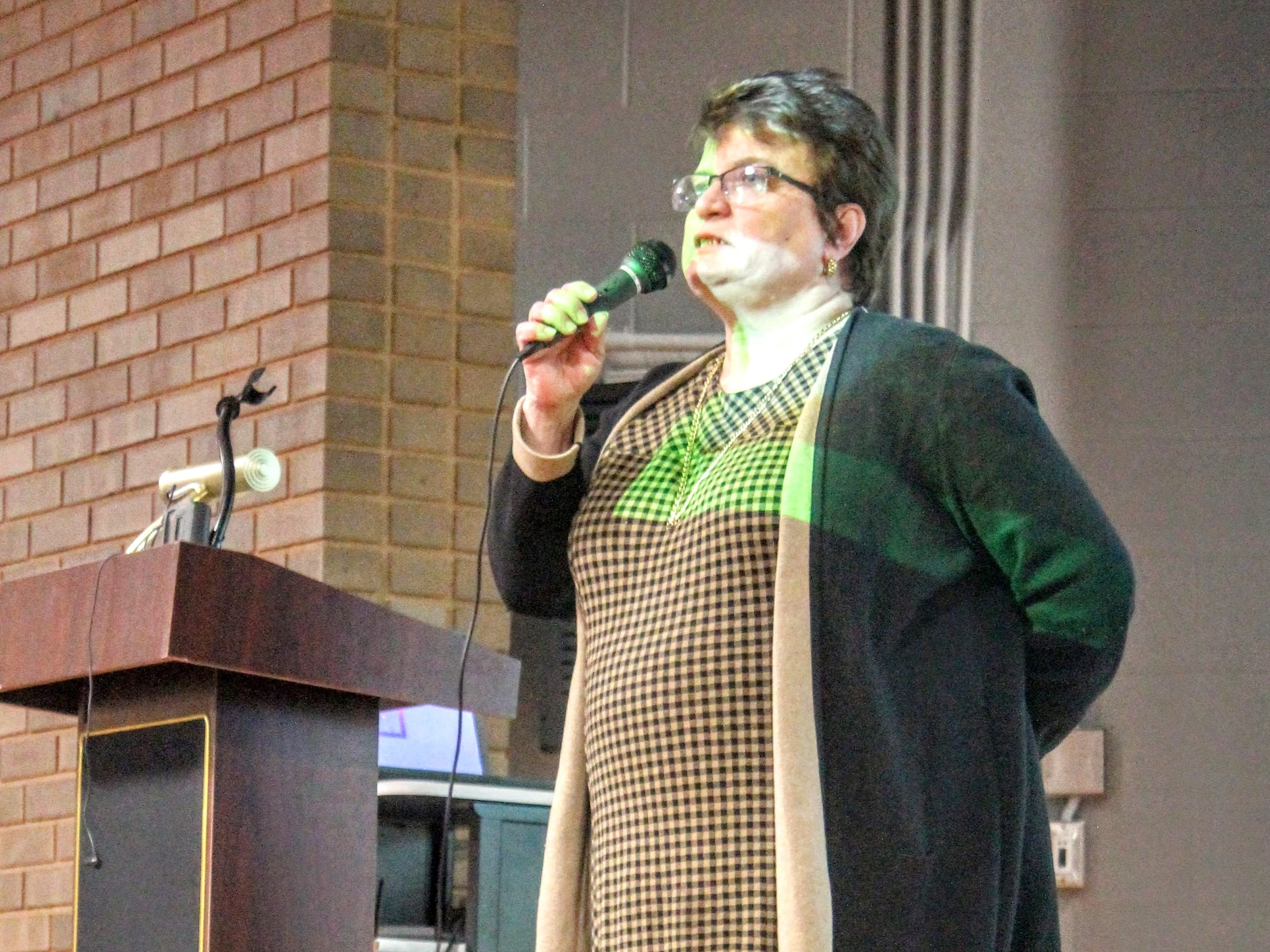 Nancy Darga, a Northville resident and former chief of design for Wayne County Parks, speaks to the crowd at the Save Hines Park meeting Jan. 9 in Livonia.