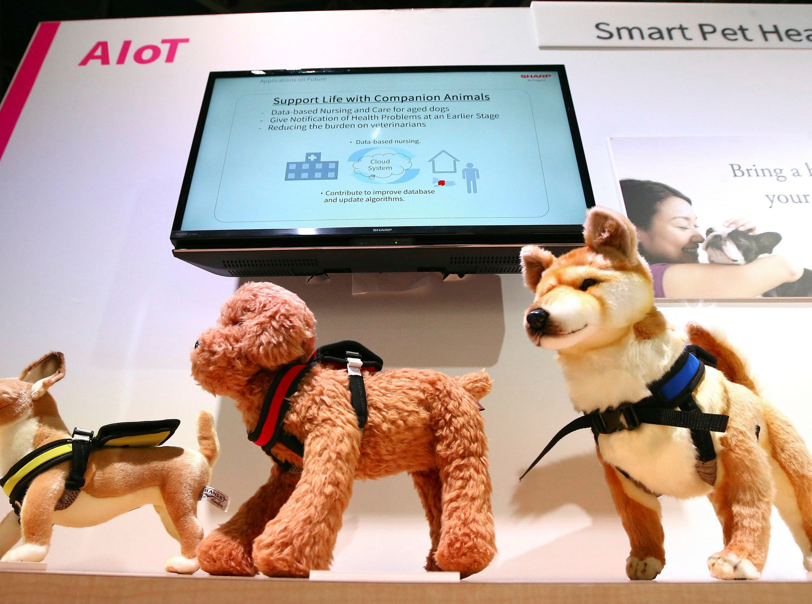Sharp offers vital sign monitors for your pets at CES International Wednesday, Jan. 9, 2019, in Las Vegas. (AP Photo/Ross D. Franklin)