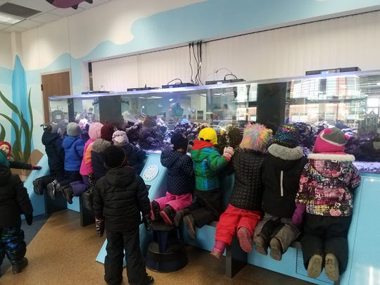 Children look at fish in the aquarium attached to the story time room, after Sharyn Heili read a book to them for the last time as an official librarian. She retires Jan. 11.