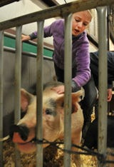 Wichita County Junior Livestock Show
