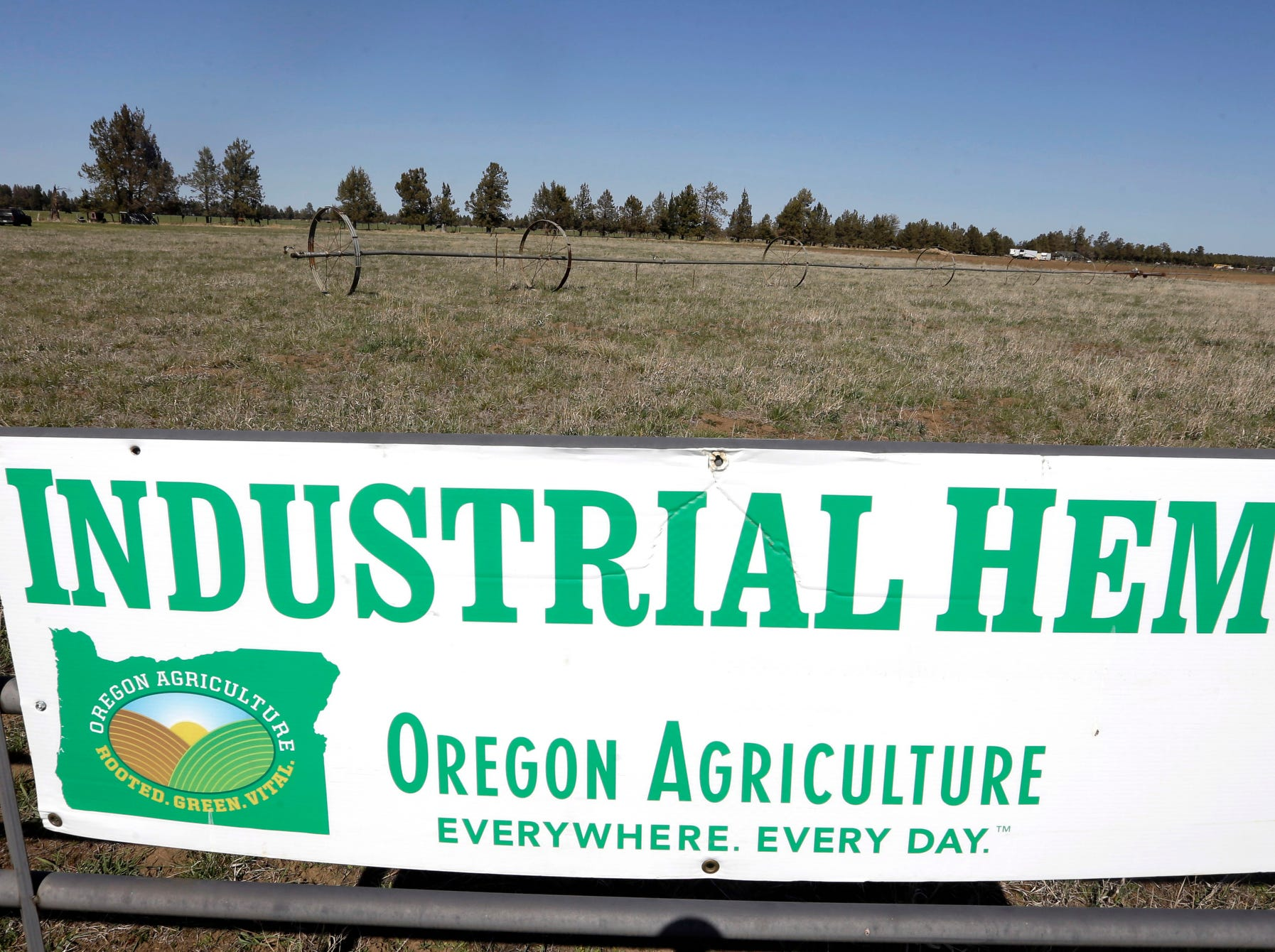 A sign designates the type of crop grown in a field as it stands ready to plant another hemp crop for Big Top Farms near Sisters, Ore.