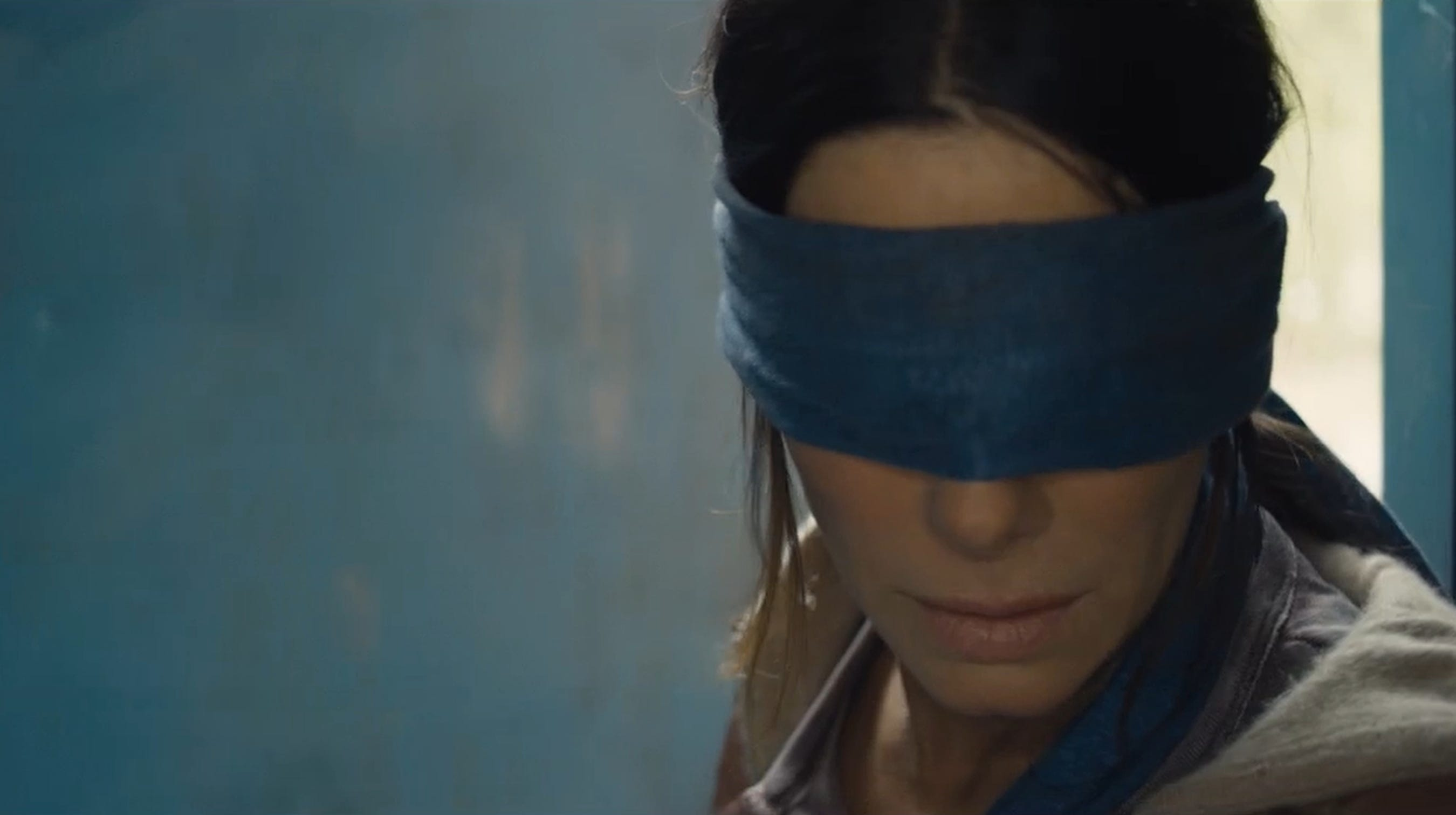 Bird Box We Need A Sequel To Answer Our Many Burning Questions