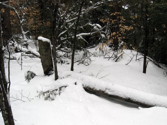 Snow and ice covers the trail at Tahquamenon Falls.