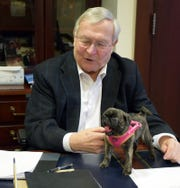 Oakland County Executive L. Brooks Patterson  plays with his pug, Daisy. The administration staff got Daisy for him as a Christmas gift.