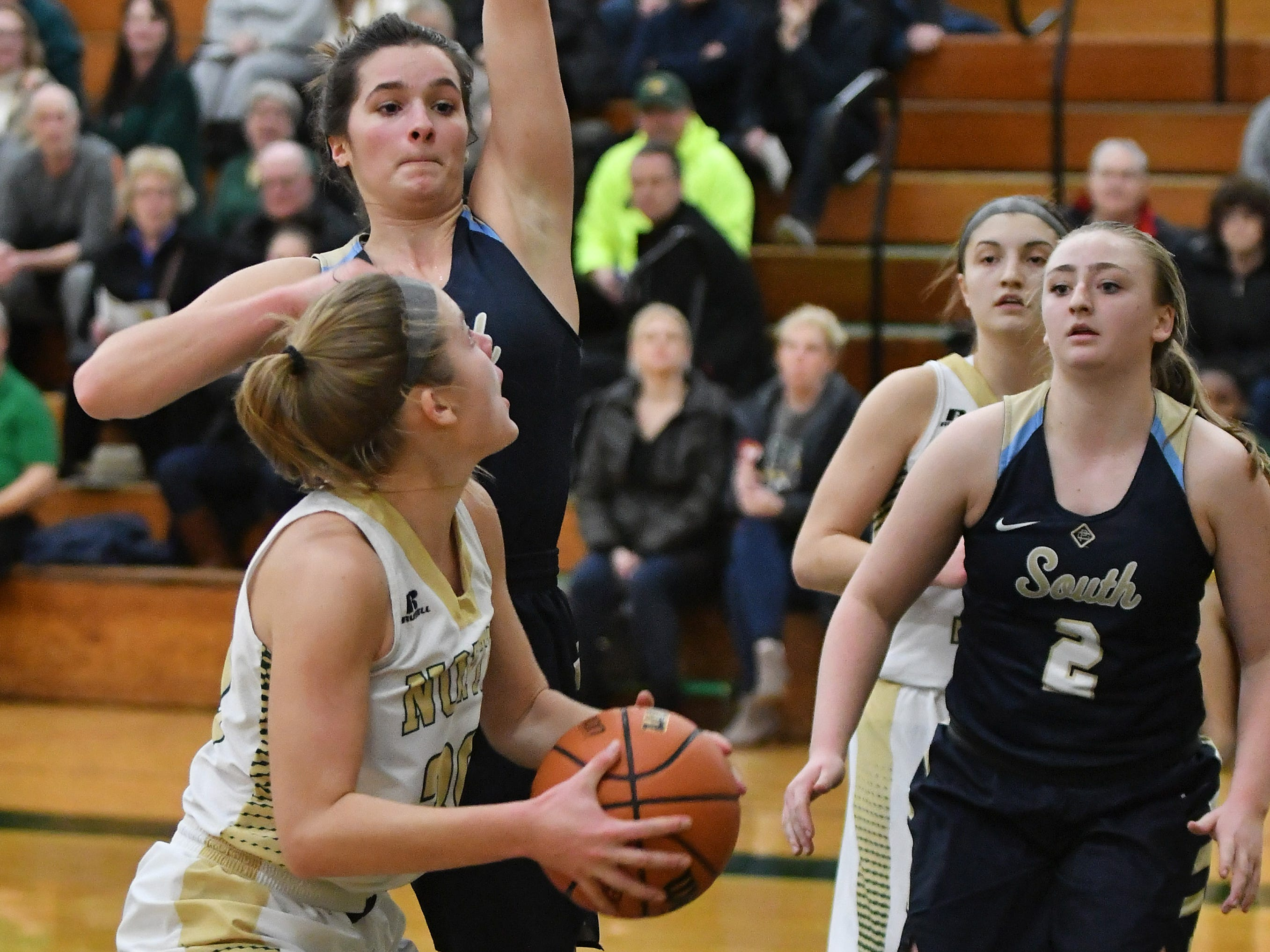 Grosse Pointe South's Savannah Srebernak guards Grosse Pointe North's Evelyn Zacharias, in white, in the second quarter.