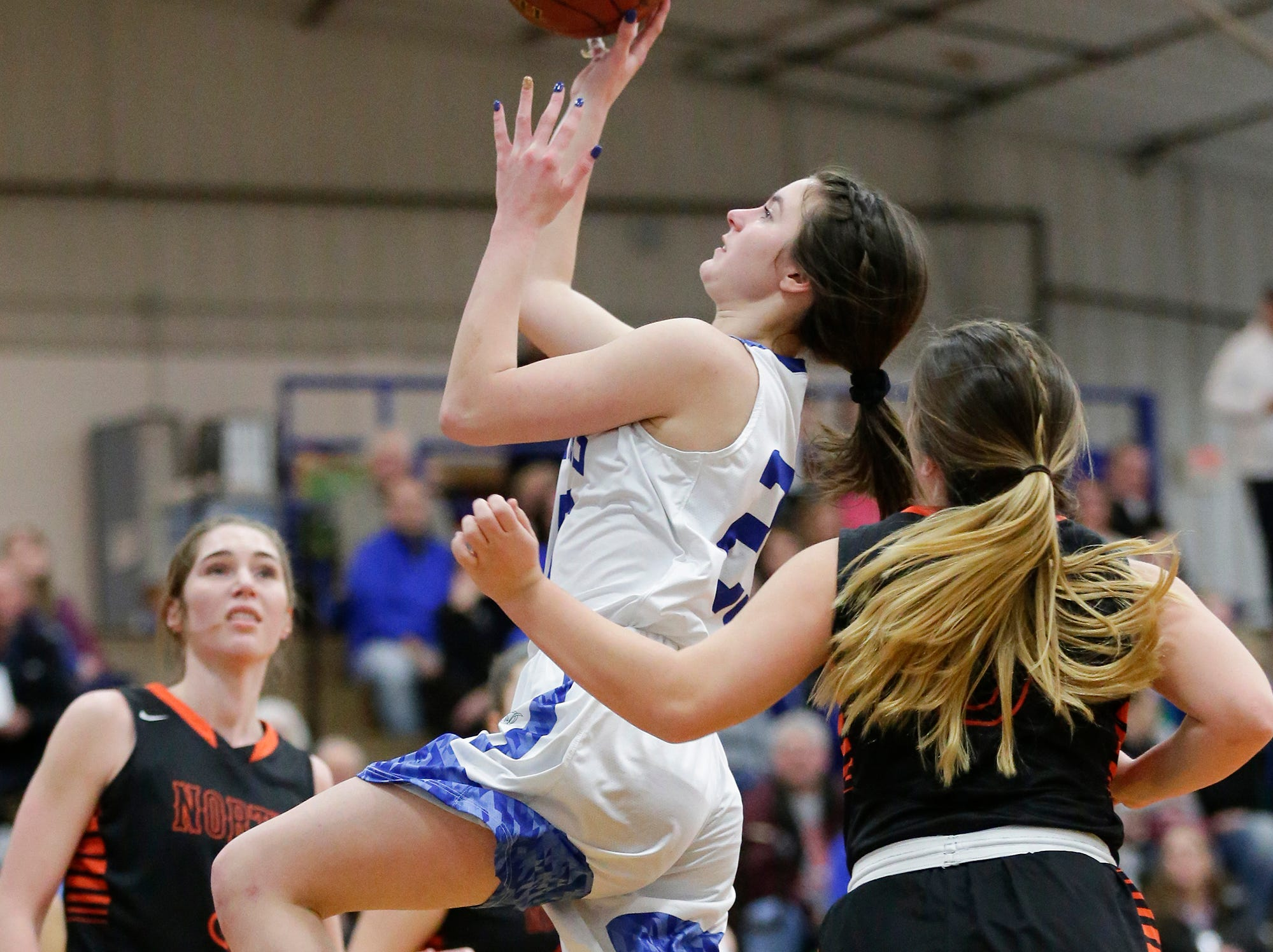 Winnebago Lutheran Academy girls basketball's Geneva Hewitt goes up for a basket against North Fond du Lac High School January 10, 2019 during their game in Fond du Lac. Doug Raflik/USA TODAY NETWORK-Wisconsin