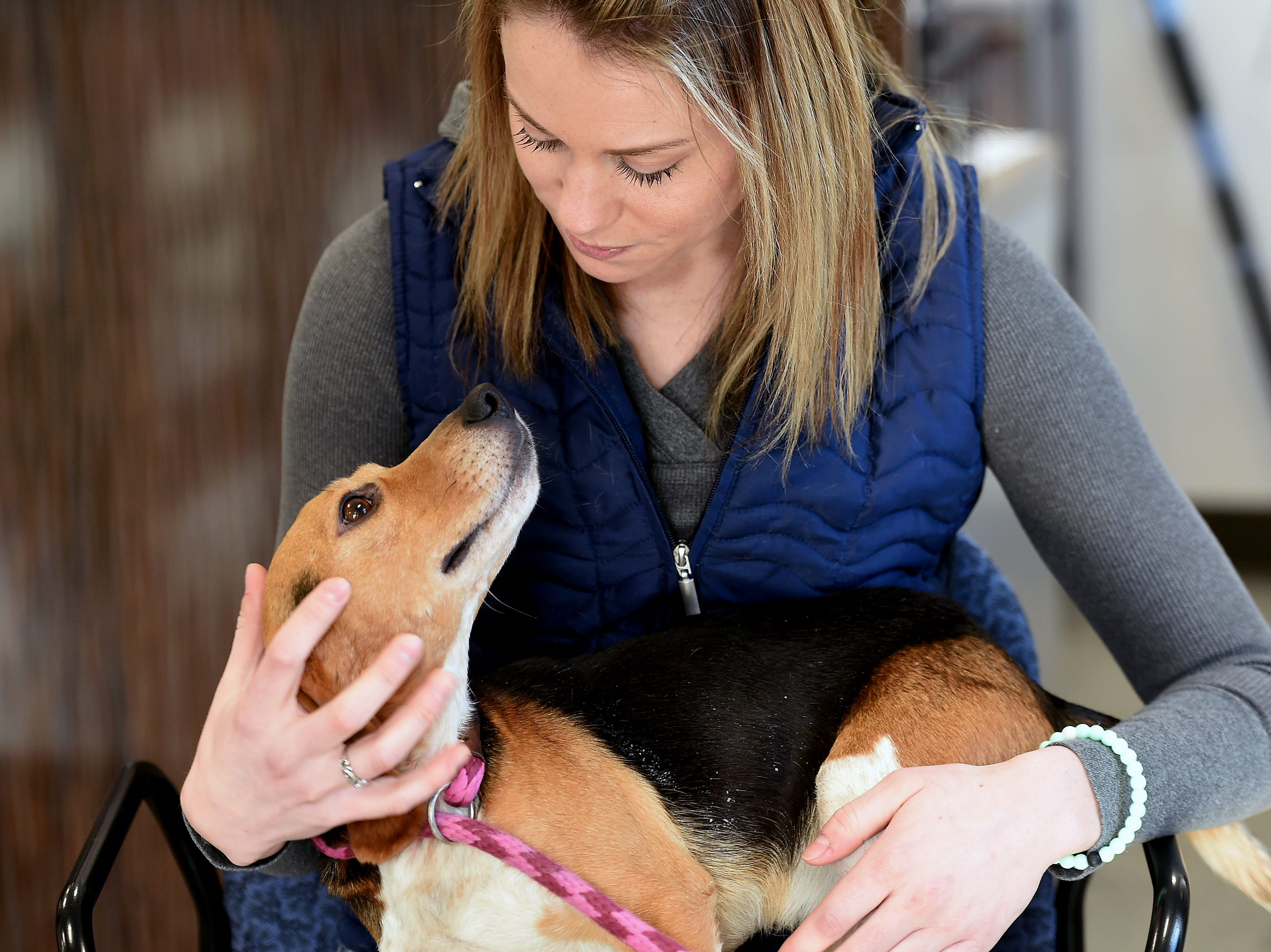 Amberly Ondria, Shelter Manager of the Broome County Humane Society, cradles beagle Adam in her lap. Adam and Trooper were thrown from a vehicle on I-81 in December. The pair was rescued by a truck driver and a state trooper and are being cared for at the Binghamton shelter. January 11, 2019.