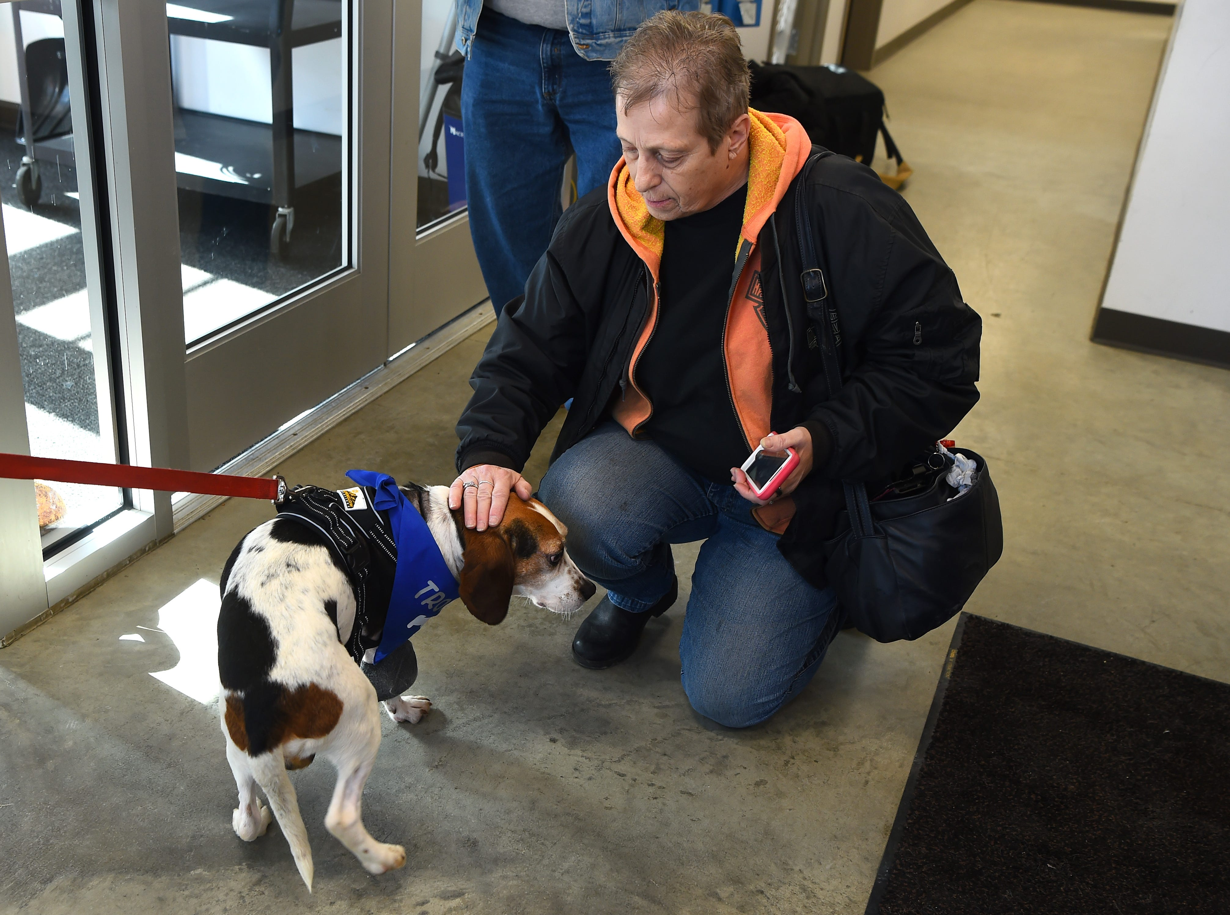 Trooper, one of two beagles thrown from a vehicle in December, with a visitor to the Broome County Humane Society. Trooper had one leg amputated due to the injury he sustained but is recovering well. January 11, 2019.