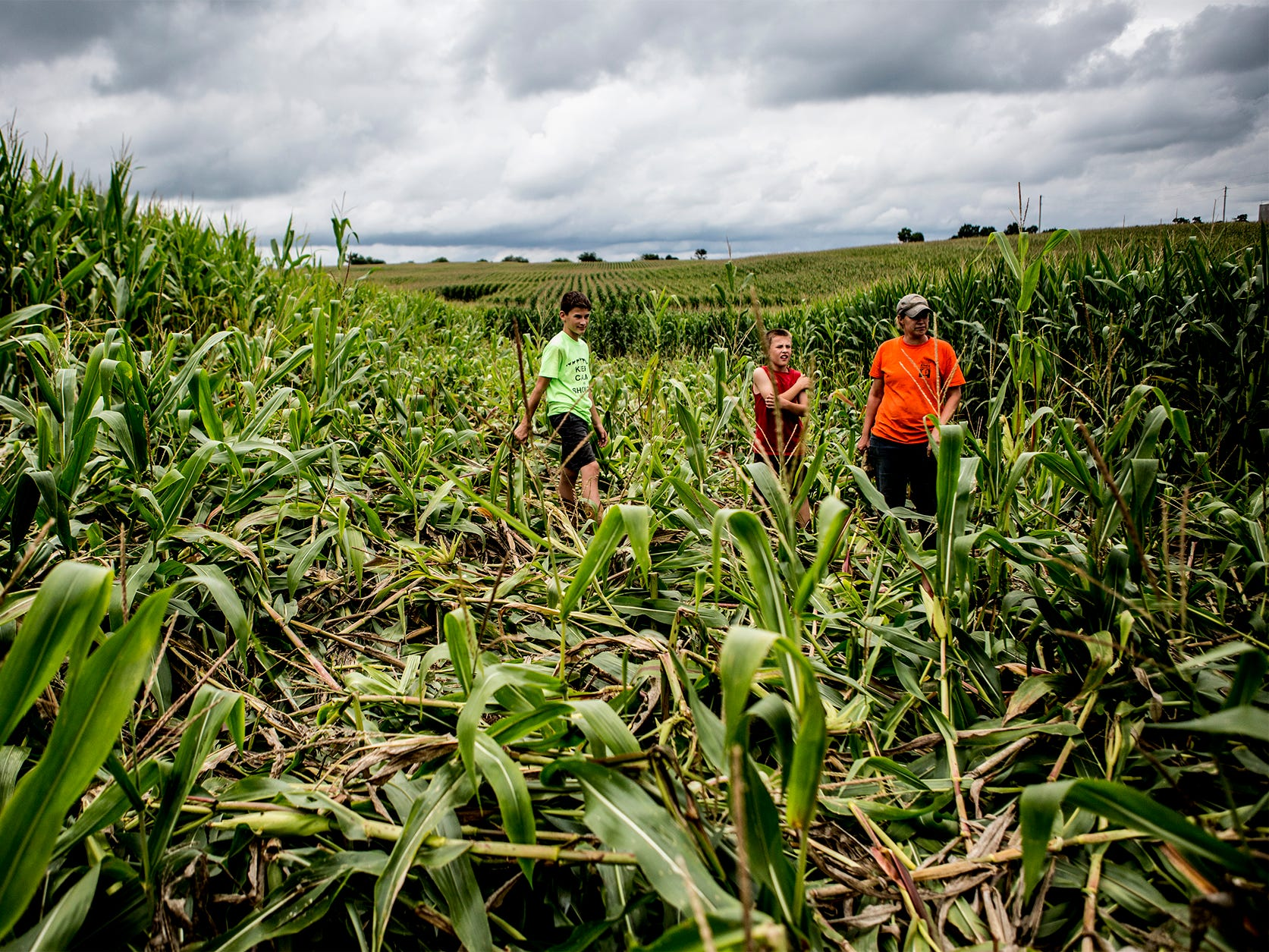 Mamie, Arthur and Bryce survey the damage to one of their corn fields after a raccoon damaged a large portion of their crop in that field.