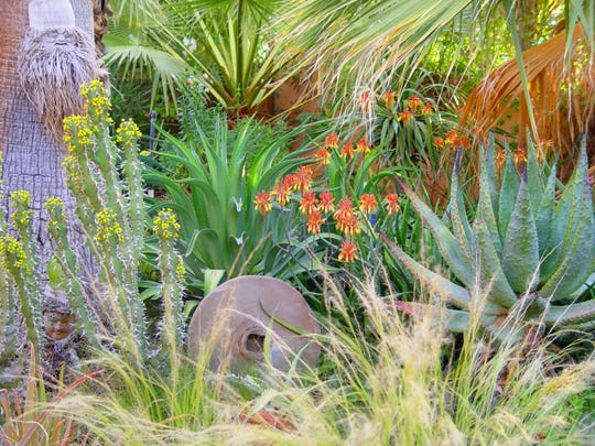 Yes It S Possible To Grow A Flower Garden In The California Desert