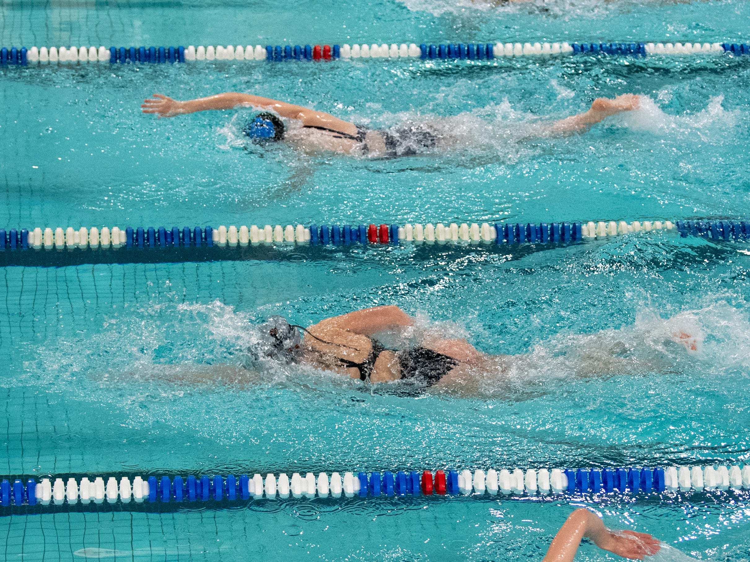 The swimmers are neck and neck as they reach the finish during the boys' and girls' swim meet between Dallastown and Central York, January 10, 2019. The Panthers defeated the Wildcats 93 to 77 and the Lady Panthers defeated the Lady Wildcats 96 to 74.