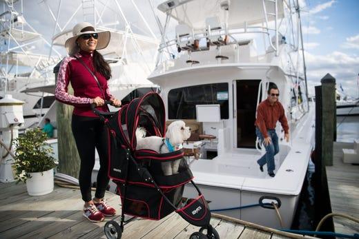 Aquaholic' tops most popular boat names list for 2019