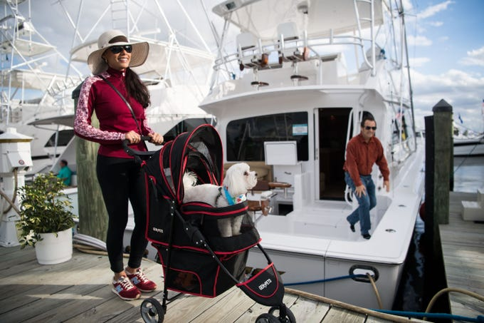 "Nadia Bernhardt, of Palm Beach Gardens, packs up her Maltese, Poochy, after she and husband Mike Bernhardt (not pictured) check out the 52-foot Viking sportfish boat ""No Slack"" at the 45th annual Stuart Boat Show on Friday, Jan. 11, 2019, in Stuart. ""I like that they have a lot of variety, it's not just one thing,"" she said, ""and it's big, it's more than I thought."""