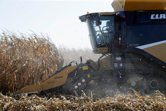 The Wisconsin Corn Growers corn yield contest encourages the development of new and innovative management practices. The contest highlights the importance of using sound agronomic practices in Wisconsin corn production systems.