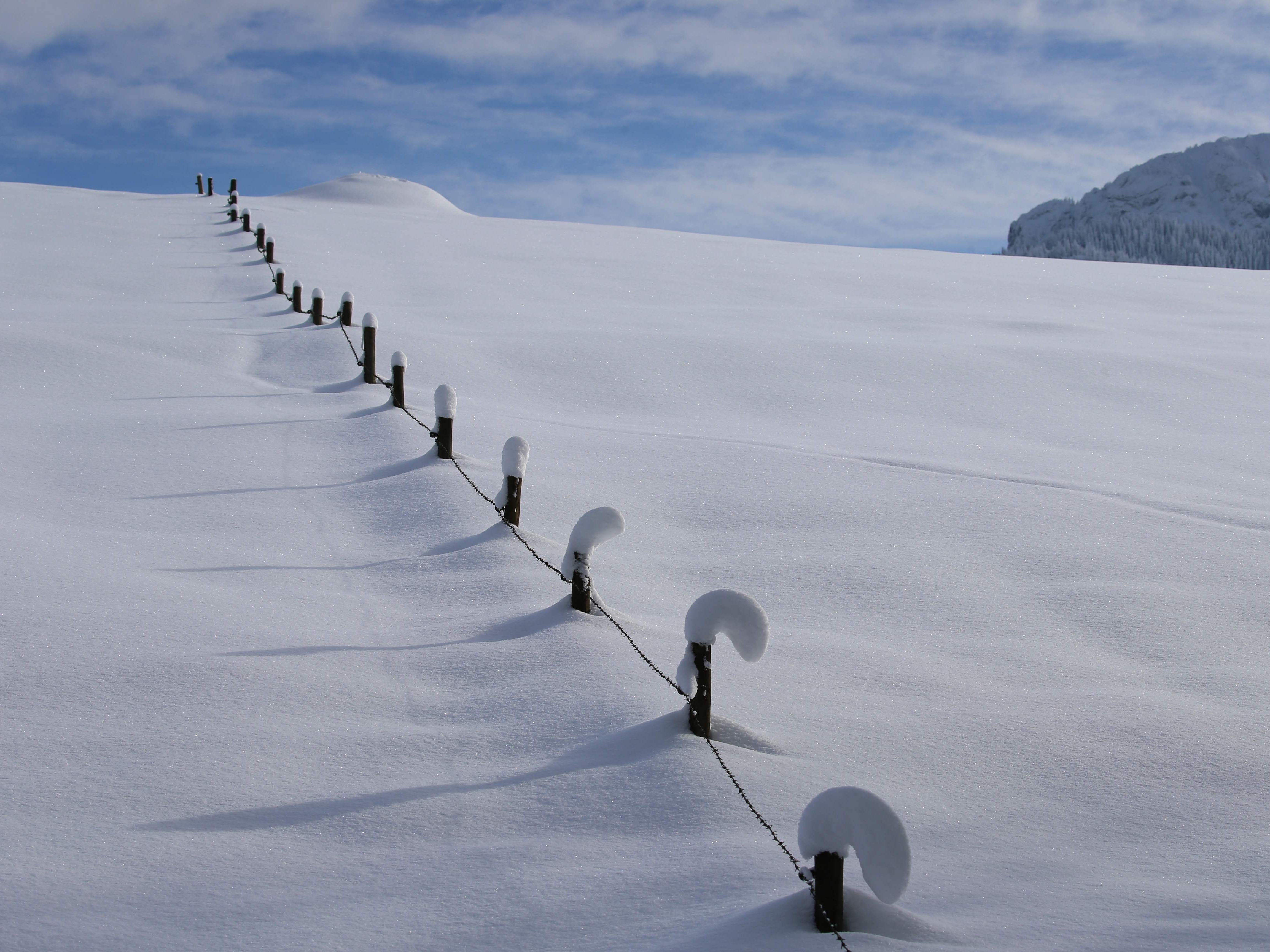 Fence posts rise out of deep snow in Schwangau,  Germany, Jan. 11, 2019.