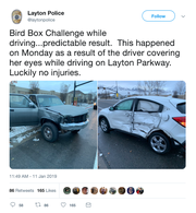"The Layton City (Utah) Police Department  says a driver was covering her eyes and participating in the so-called ""Bird Box Challenge"" when she crashed into another vehicle on Monday."