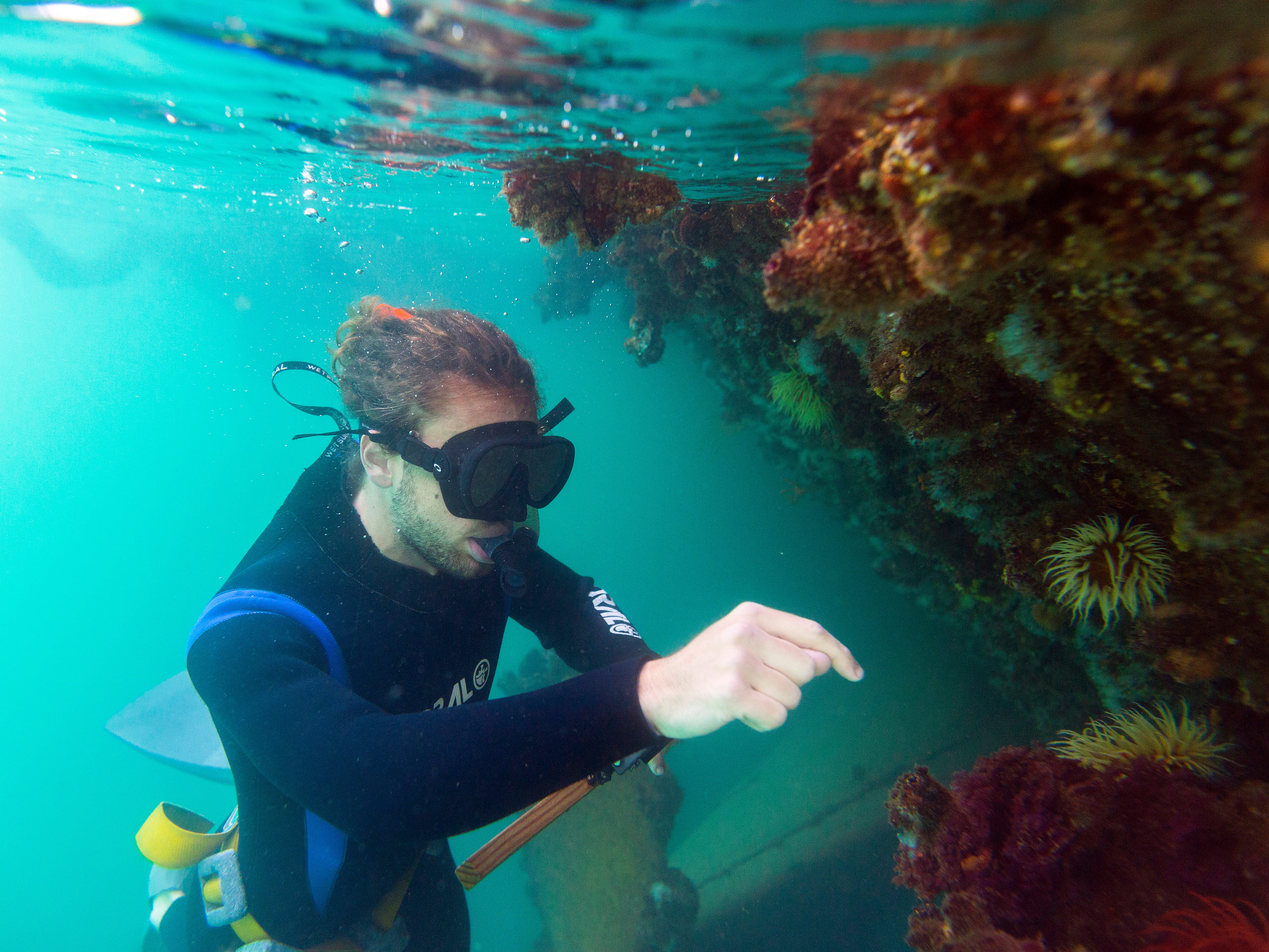 A marine biology student identifies species growing on the hull of a ship during a marine biology survey in the Indian Ocean in False Bay, Cape Town, South Africa 0n Dec. 22, 2018. Global warming isn't only cooking our atmosphere, its also heating up the oceans. The world's seas were the warmest on record in 2018, scientists announced Thursday. Also, ocean temperatures are rising faster than previously thought, a new paper said.