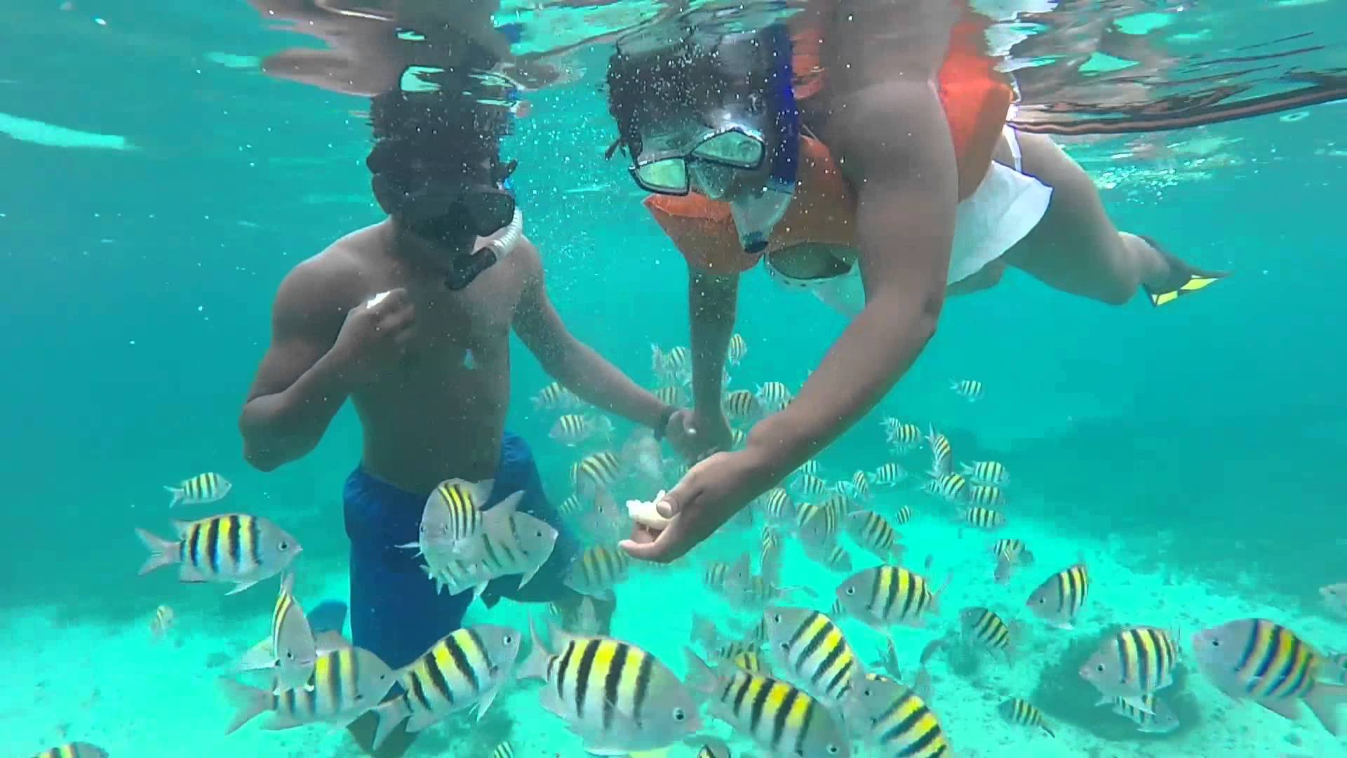 A small island offshore from Negril in Jamaica, Booby Cay is also one of the best spots for snorkel newbies who might not be up to venturing into deeper waters.
