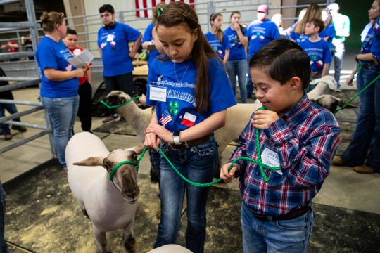 Alex Soliz waits to exhibit a lamb as he and other third- to 12th-grade special-needs students show goats and lambs during the Nueces County Junior Livestock Show at the Richard M. Borchard Regional Fairgrounds in Robstown on Saturday,  Jan. 12, 2019.