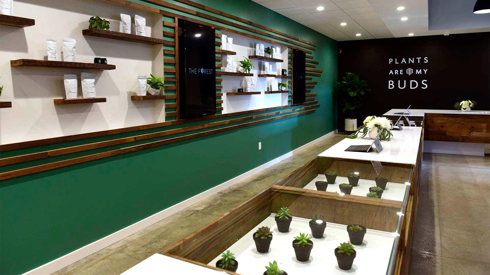 The Forest Sandusky medical marijuana dispensary soon to open
