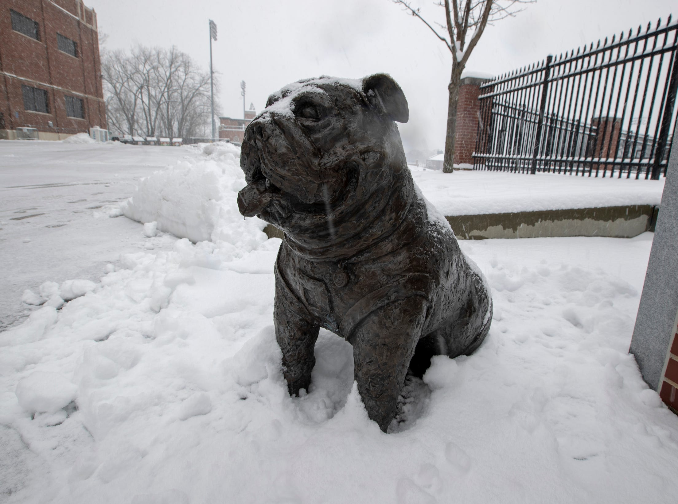 A statue of the Butler Bulldog, at Butler University on a day where 5-7 inches of snow is expected to fall in Central Indiana, Indianapolis, Saturday, Jan. 12, 2019.