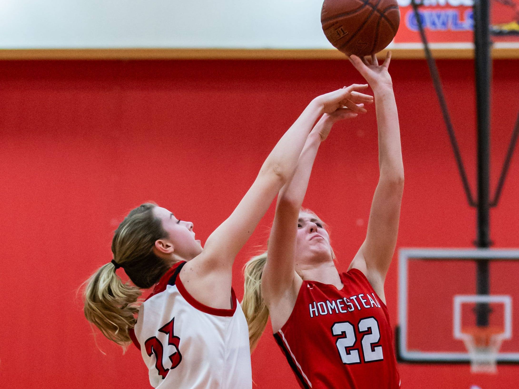 Homestead's Sam Crivello (22) gets a shot past Slinger's Kate Hosking (23) during the game at Slinger on Friday, Jan. 11, 2019.