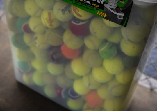 A healthy supply of tennis balls is on hand aturday, Jan. 11, at the Grey Face Rescue indoor dog park.