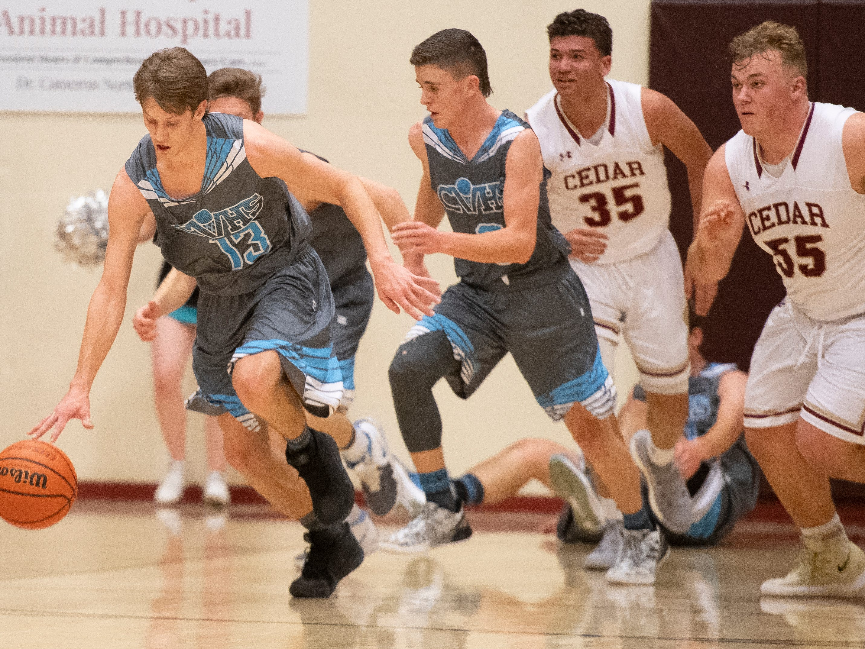 Canyon View High School senior Parker Holmes (13) steals the ball from Cedar at CHS Friday, January 11, 2019. Canyon View won, 61-56.