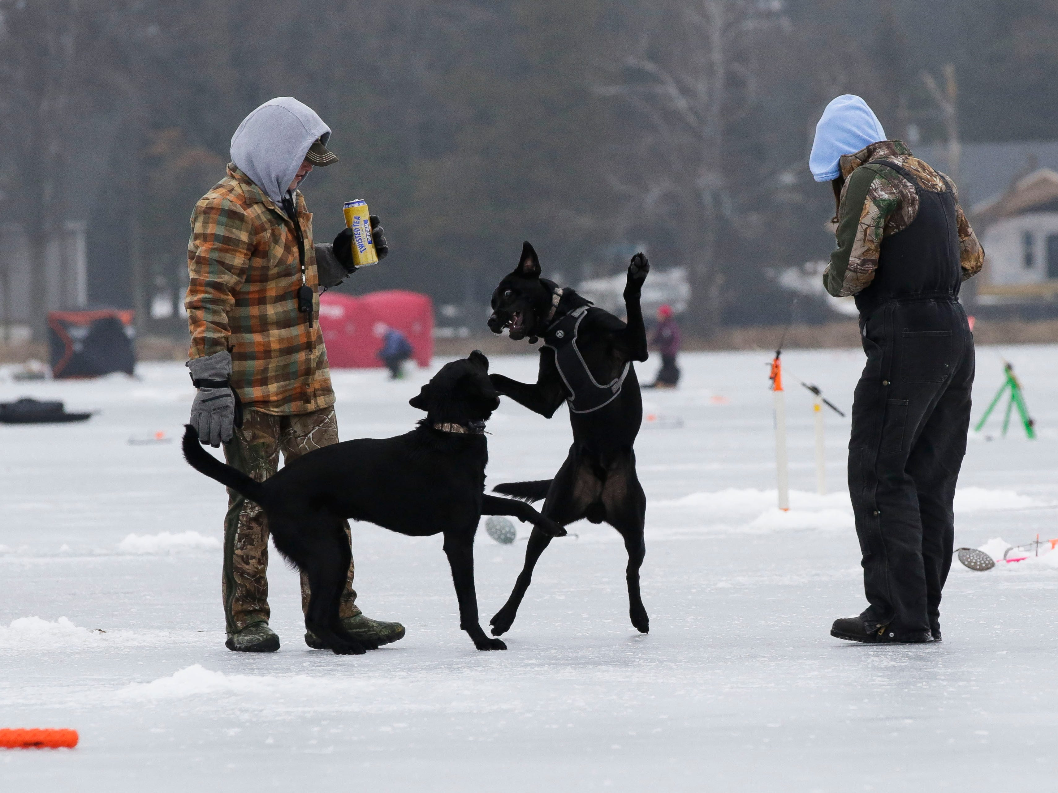 Natalie Widder and Beka Oliver watch as their dogs, play on Saturday, January 12, 2019, during the Rosholt Blizzard Busters Fisheree at Lake Helen outside Rosholt, Wis.Tork Mason/USA TODAY NETWORK-Wisconsin