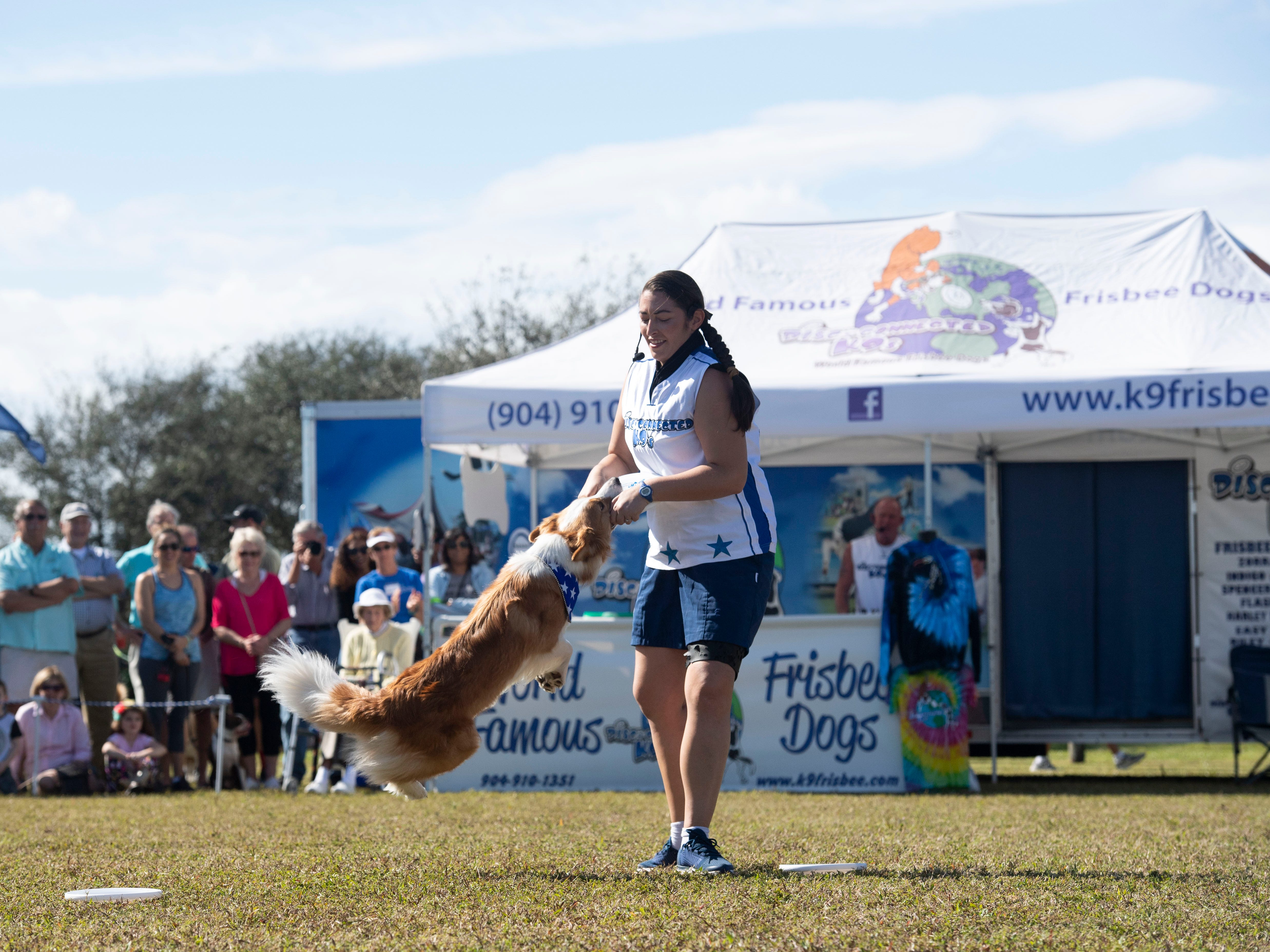 "Disc-Connected K9's trainer Infinity Boguslavskaya and Margarita perform frisbee tricks to a delighted audience Saturday, Jan. 12, 2019, during the Humane Society of Vero Beach and Indian River County's sixth annual Bark in the Park at Riverside Park in Vero Beach. Hundreds of people and their dogs came to the event that featured the frisbee acts, the Ultimate Dock Diving Dogs, a kids zone, lure curse, the Humane Society's Mobile Adoption Unit and vendors. ""The purpose of Bark in the Park is to bring the community's pet lovers together and to celebrate the human, animal bond,"" said Kate Meghji, executive director of the Humane Society. ""Watching dogs be dogs is pretty much the most entertaining and heartwarming thing ever,"" she said."