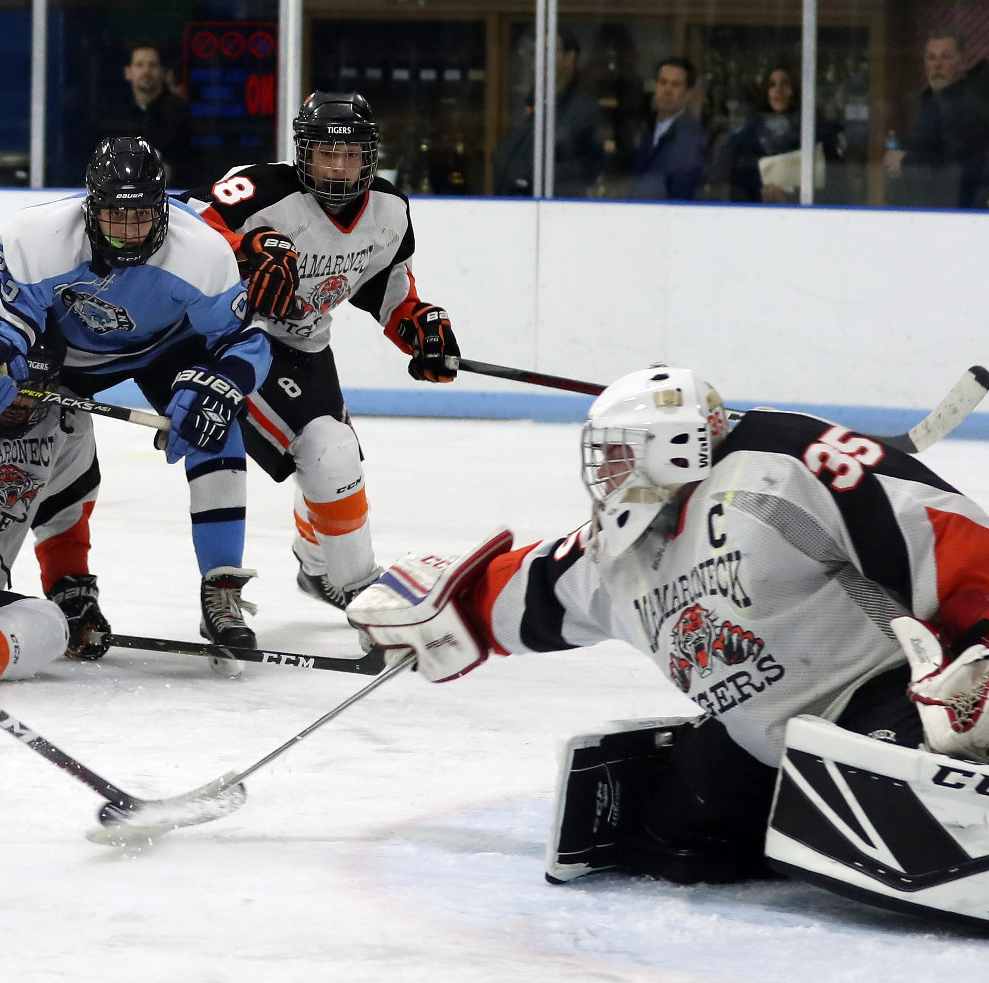 Hockey: Predictions for every game of the Section 1 tournament
